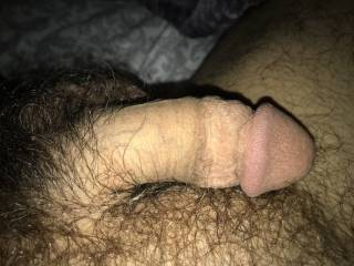 Waiting for a sweet wet hole to inspire my Linley cock.