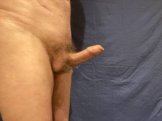 A profile of Mr Stiffie standing erect after you have aroused 'Him'.