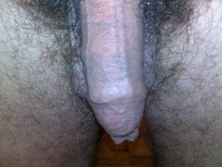 Love the feel of hair on my lips and tongue. And warm salty cum going down my throat.