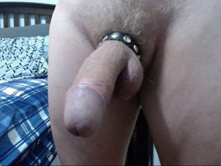 My hard dick in a cock ring.