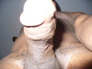 My head is blocking my head but I am in close, want to have a lick?