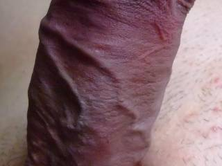 any woman wanne suck this big fat cock?