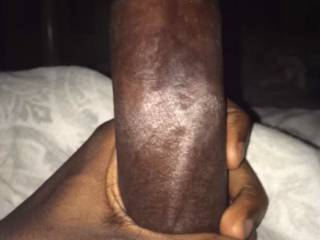 Just my black dick looking for pussy