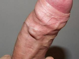 hard uncut veiny big dick
