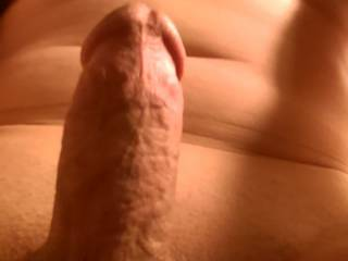 Myself and another zoig member were sharing how we love sex. I love a women who knows what she wants. And if she wants my hard cock in her ass until I blow a load,  well she will have my dick at attention.
