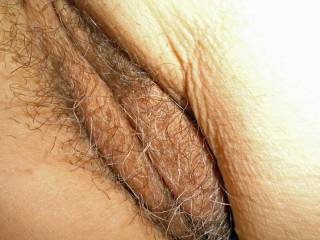 Wife hairy Pussy before she shaved it.