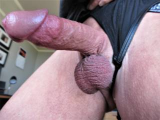 my hard cock waiting to be sucked or fucked