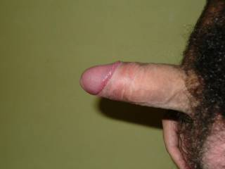 my penis waiting for for your wet pussy