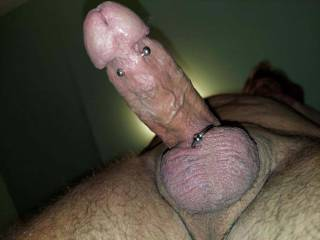 miss this look of my THROBBING PIERCED COCK!!