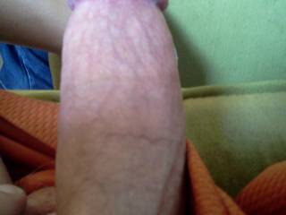 Just my dick ready to go