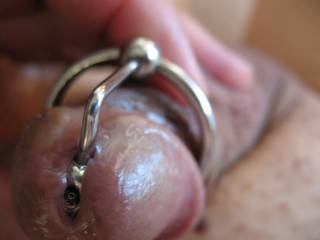 He just loves to wear jewelry.  Does he look cute?  There is precum flowing now.