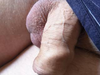 Relaxed penis