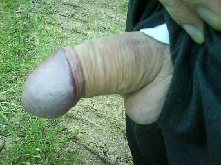 just outdoor, you like?