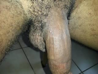 my hairy cock hanging around