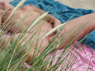 Horny at the Beach...