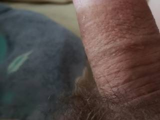My hairy fat little cock