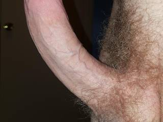Big thick curved cock