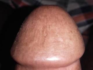 Dick head show