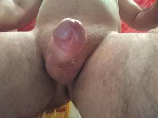 Here is my thick, uncut dick with big acorns! Like?