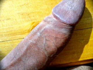 hoping you enjoy a look at my steely cock...