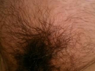 It is so beautiful, with hairy pussies. It looks really sexy