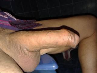 cock head inside foreskin