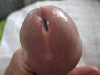 pre cum dripping out of my cock. Dont need any extra lube just my juices