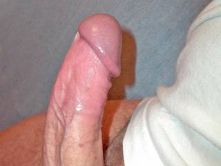 my cock wants your pussy