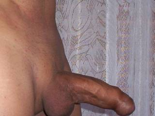 Looking horny too...I'll take it any way you want to give it ...