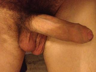 Nice...  Big, uncut, hairy with some suckable looking balls!  I like!