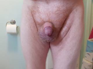 Who likes my little cock?