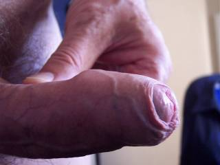 What a magnificent cock with a very fine foreskin!