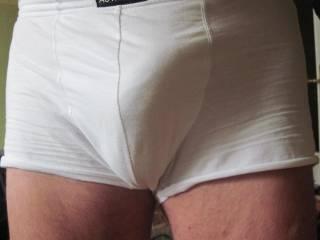 dick in pants