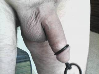 His plugged, freshly shaved cock going outside for the first day of nude sun bathing.  Anyone want to put sun tan oil on?