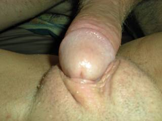 MMM MM I would LOVE to lick and suck both of you!!!
