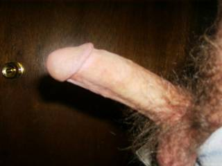 Lovely erection ,would love to see a video of you wanking it.