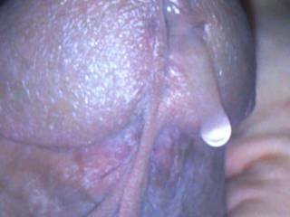 Cum dripping out my hard cock,  from touching my girls pussy.