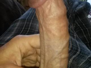 Im always horny in the morning.  Happens when I look at all these hot holes on Zoig.  Thinking of pumping you while I look at you!  Ass or pussy?  Where do you want it?
