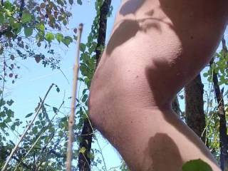 Jerking off in the woods and cumming, wish I had some company