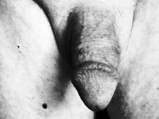 Cock in black and white!
