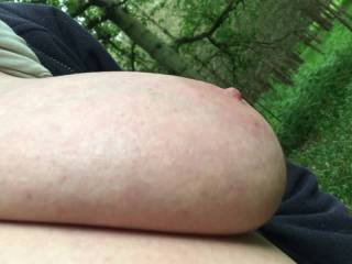 All sorts of views of my friend\'s big tits in woodland - front. underneath, close, angled.