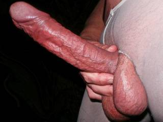 What do you think of this for a stiff German Cock and Balls?
