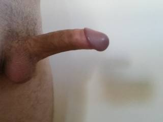 Very nice suckable cock and big lickable mushroom head