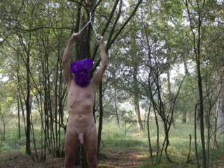 bound to a tree and ready to be used as a slave