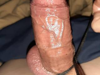 Big veiny cock, all oiled up.