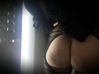 ...just like an elevator, my ass spends the days going up and down... up and down...