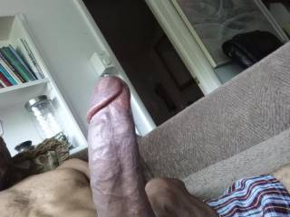 come suck on this dick