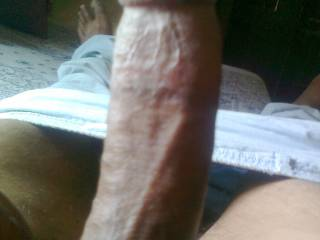 my aching cock want a tight pussy.....