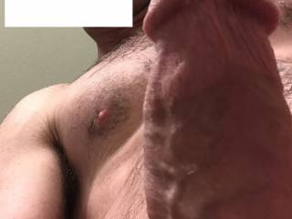 My fat throbbing cock needs a warm place, any suggestions??