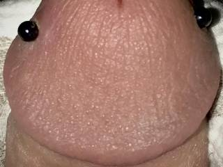 Close up of my pierced cock head.